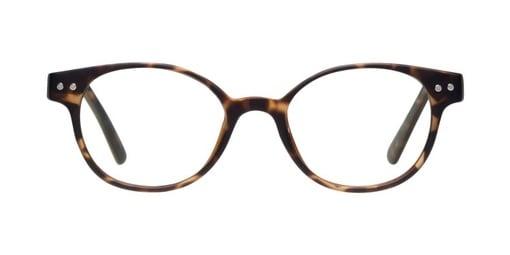 Pupil Matte Tortoise