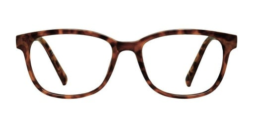 Houston Blonde Tortoise